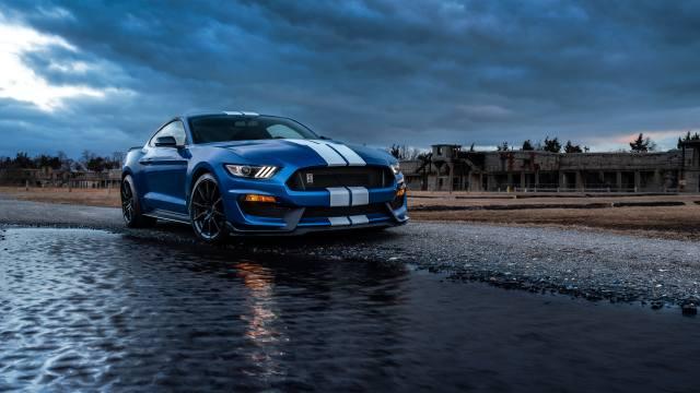 Car, Ford, Mustang, ford mustang, ford mustang shelby gt500