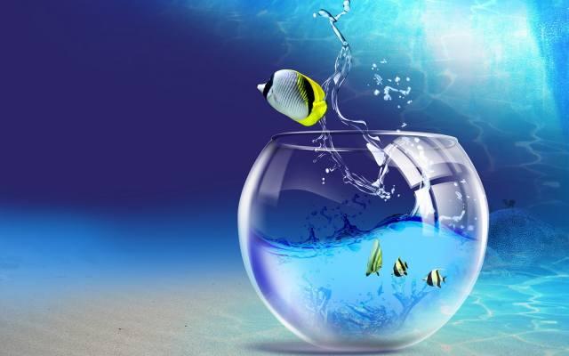 3d, риби, анімовані