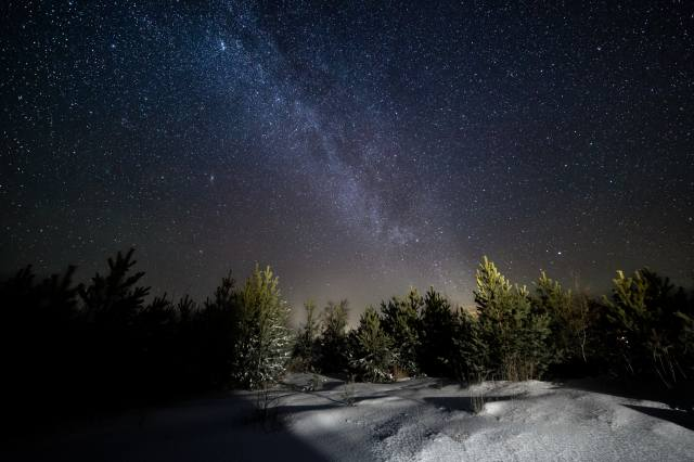 ніч, зірки, ліс, сніг