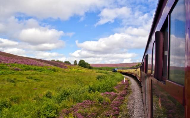 field, train