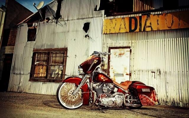 Harley Davidson, motorcycle, the bike, custom