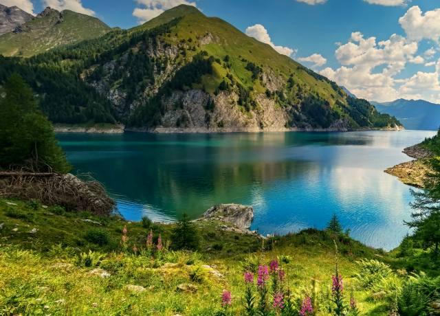 гори, небо, озеро, квіти, дерева, краєвид