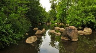 řeka, příroda, kameny, les, rybaření, krásně, dovolená, téma
