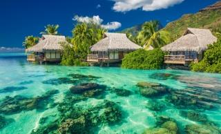 letovisko, v tropech, dovolená, ráj, tropické, blaho, pláž, palmy, moře, oceán, slůnce, letní, oceán, hory, příroda, džungle, palmové, léto, dům a pohodlí, krásně