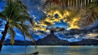 тропічний, пляж, пляж, тропічний