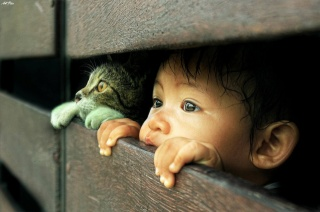 child, cat, view
