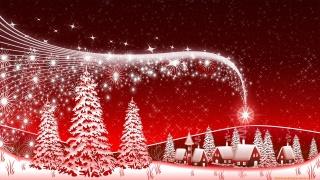 зірка, небо, червоний, дерево, Різдво