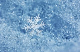 зима, макро, фото, тема, снежинка, снег