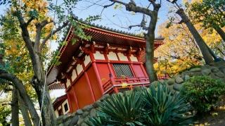 Япония, парк, пагода, красота