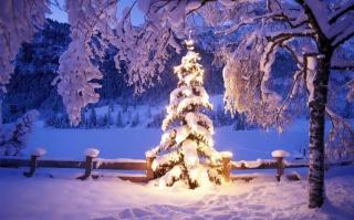 вечір, природа, зима, гори, ліс, озеро, ялина, Новий рік, красиво