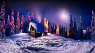 les, sníh, chalupa, zima