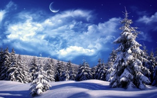 příroda, les, nebe, měsíc, fantasy, krásně, zima