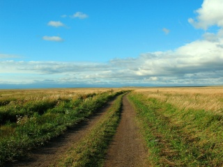 summer, landscape, Kazakhstan, the way, road, the steppe, Central Kazakhstan, Astana, distance, the sky