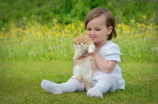 girl, Cat, child, kitty, grass