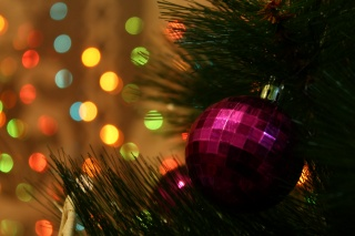 tree, ball, garland, macro