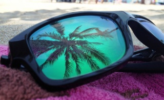 sunglasses, towel, the palm tree in the reflection, the beach