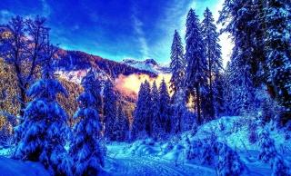 зима, горы, лес, утро, красиво