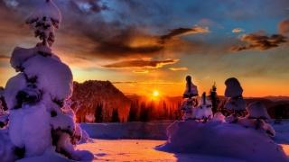 зима, гора, снег, деревья, солнечный свет