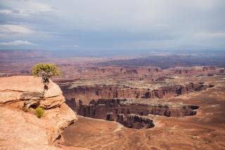 USA, Utah, valley, the sky, canyon, tree, beauty