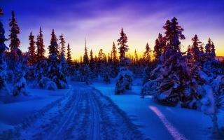 zimní, hory, sníh, stromy, silnice, slunce, sky, modrá