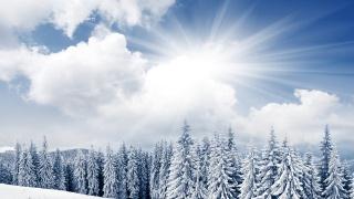 zimní, hory, sníh, stromy, sluneční světlo