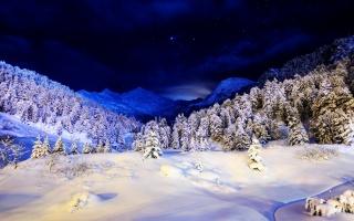 zimní, hory, sníh, stromy