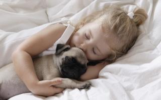 Любовь, детство