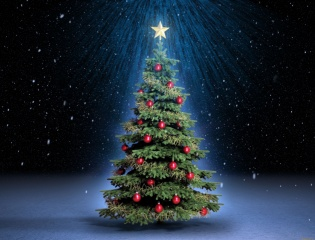 New year, tree, fantasy, art, work, beautiful, Christmas tree, the dark background