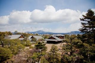 Japonsko, Kjóto, stromy, doma, nebe, krása