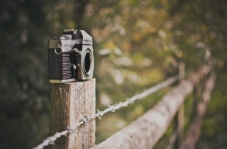 the camera, photo, creative, figure, macro, nature