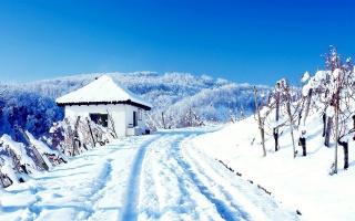 гора, дом, коттедж, Снежное, дерево, патч