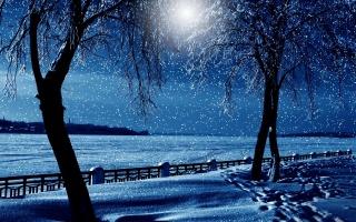 снег, река, город, дерево, замороженные, забор