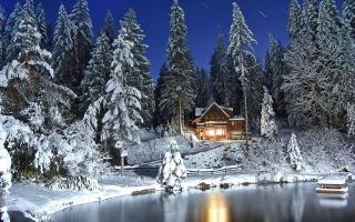 озеро, замороженные, дерево, дом, снег, холодный