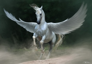 art, Lin Zhou, fantasy, Pegasus, horse, white, wings, dust, sand