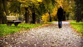 парк, лавка, доріжка, опале листя, дівчина