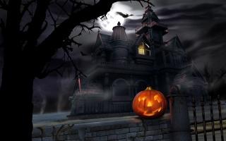 holiday, Halloween, 31 October