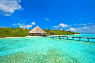природа, остров, Мальдивы, красиво, джунгли, дом и уют