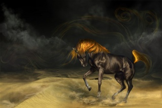 фэнтези, пустыня, конь, фотошоп, арт, работа, лошадь, темный фон