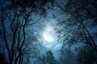 природа, осінь, ніч, місяць, хмари