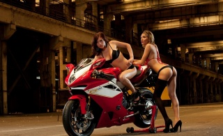 girls, posing, blonde, brown hair, sportbike, motorcycle, sexy, photo, theme