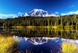 snow-capped mountains, forest, river, reflection, riparian vegetation