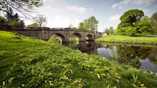 nature, the bridge, river