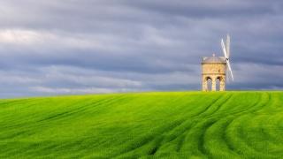 the gray sky, green field, windmill