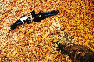 autumn, couple in love, love in the fallen leaves