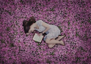 a field of flowers., girl, book