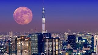 місяць, телевежа, мегаполіс