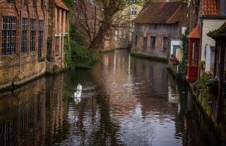 Бельгія, Брюгге, канал, вдома, краса