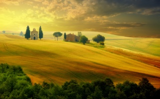 Italy, nature, field, trees, the house