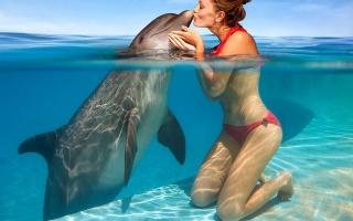 девушка, дельфин, бассейн, фото, позитив, креатив, поцелуй