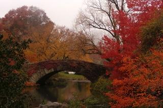 картинка№2, США, місцевість після приходу осені
